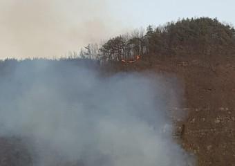 [포토]산청군 달집 태우다 산불 냈다!!